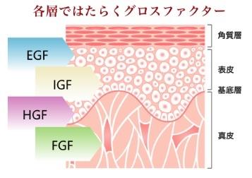 各層で働くグロスファクターの図解