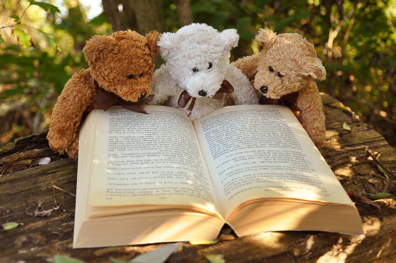 3匹のクマが勉強しているところ