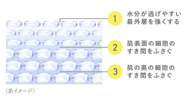 オルビスディフェンセラの3段階バリア図解